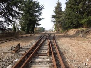 2014.03.30 camminata ferrovia CCO 085