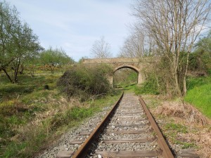 2014.03.30 camminata ferrovia CCO 159